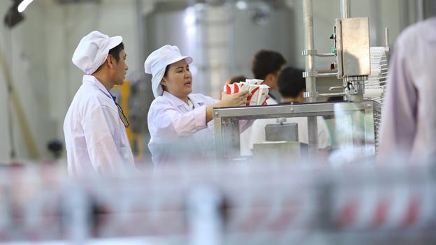 บริการโรงงานและห้องปฏิบัติการสำหรับผลิตและตรวจสอบคุณภาพ
