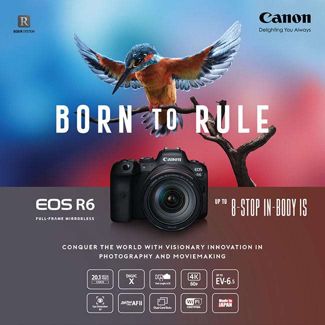 กล้อง EOS R6